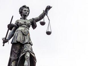 Recht & Haftung