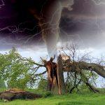 Sturmtief Sabine tobt über Deutschland – welche Versicherung hilft bei welchen Schäden